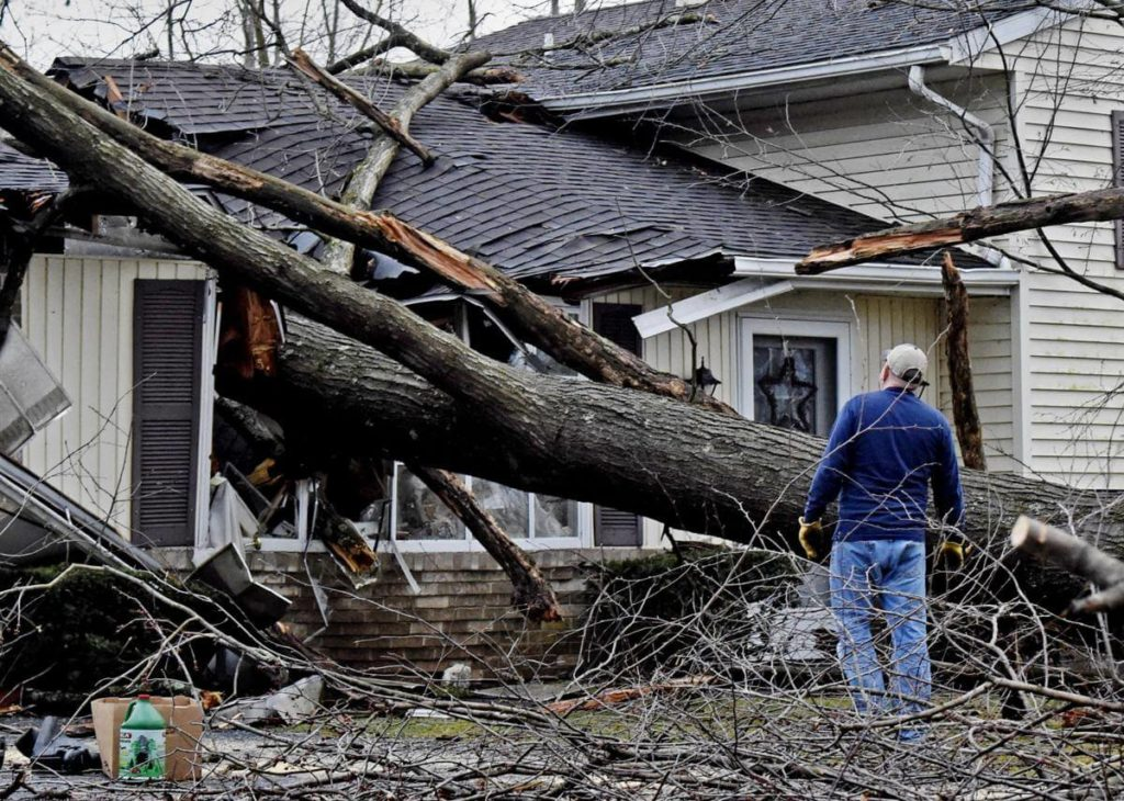 Storm Damage-Aventura FL Tree Trimming and Stump Grinding Services-We Offer Tree Trimming Services, Tree Removal, Tree Pruning, Tree Cutting, Residential and Commercial Tree Trimming Services, Storm Damage, Emergency Tree Removal, Land Clearing, Tree Companies, Tree Care Service, Stump Grinding, and we're the Best Tree Trimming Company Near You Guaranteed!
